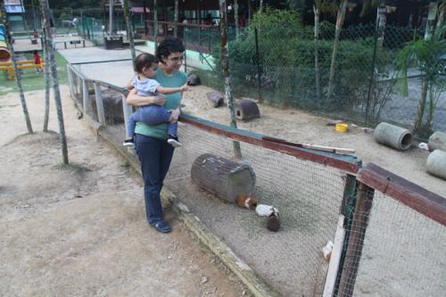 10 rabbit farm