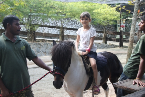 Pony ride!  This was a really short ride, but Svara of course enjoyed it anyway.